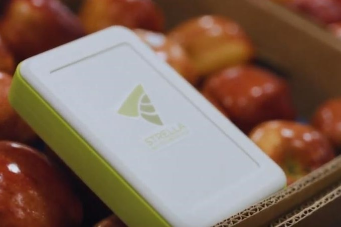 Yamaha Motor Ventures Co-Leads Seed Funding Round for Food Supply Chain Technology Startup Strella Biotechnology